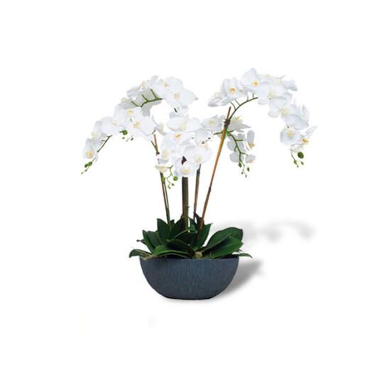 westhampton florist